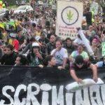 A atual política de drogas no Brasil: um copo cheio de prisão