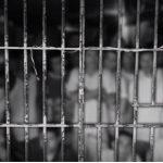 Documentário da TVT analisa encarceramento em massa no Brasil