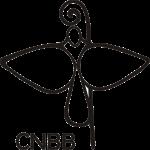 """CNBB: """"urge um novo modo de fazer política, alicerçado nos valores da honestidade e da justiça social"""""""